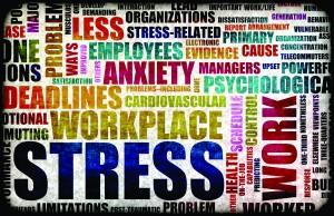 StressEmbry