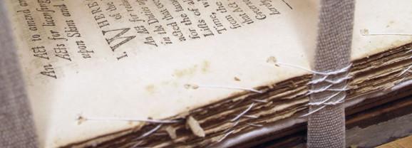 A Bibliophile's Haven