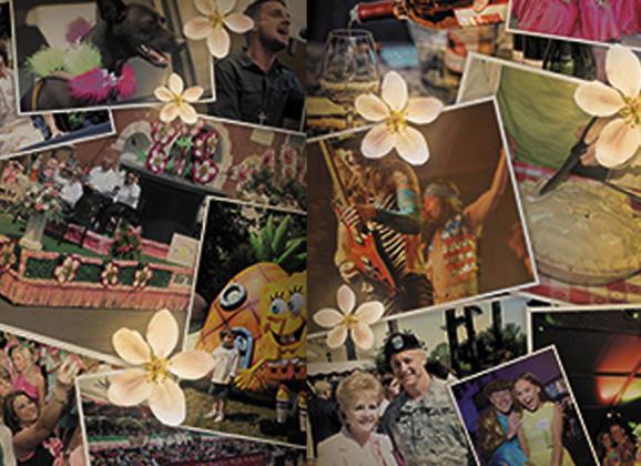 89th Annual Apple Blossom Festival