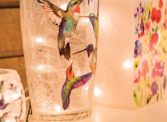 Wild Bird store offers niche for Winchester area 'birders'