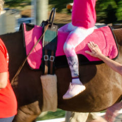 Horses Help Heal the Hurting and Handicapped